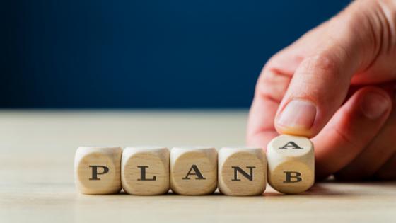 flexible plan_1